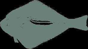 halibut icon